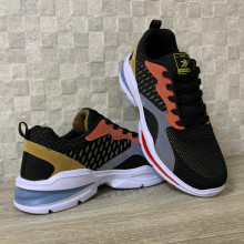 Pantofi Sport 2009