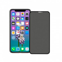 Folie protectie, Sticla, Apple iPhone 11, Privacy Glass, Negru