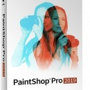 PaintShop Pro 2019 Multilanguage Windows Educationala