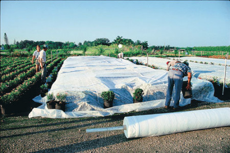 Folija za zaštitu biljaka Agril 21gr 4x100m