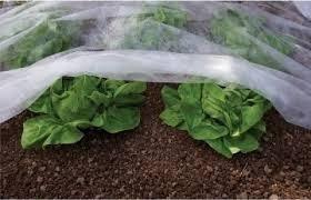 Folija za zaštitu biljaka Agril 21gr 6,4x100m
