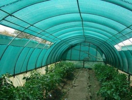 Mreža za zasenu 10,5x50m 40% zelena