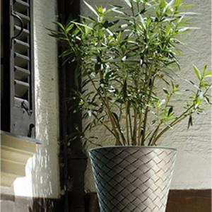 Saksije za cveće MATUBA 30x29cm moka bez uloška