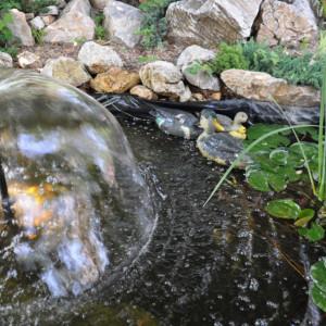 Folija za ribnjake i jezera 8m - ALFAFOL 0,5mm