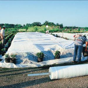 Folija za zaštitu biljaka Agril 19gr 6,4x100m