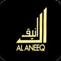 Al Aneeq