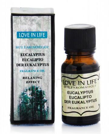 Ulei parfumat Eucalyptus 10ml