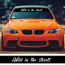 Parasolar auto *WILD IN THE STREETS* + Kit instalare
