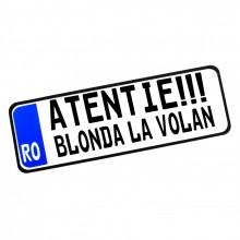 Placa Auto Personalizata (mesaj predefinit) 30x10cm