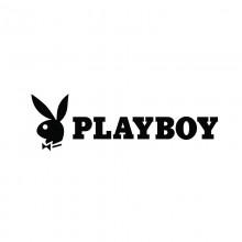 Stiker Abtibild autocolant *PLAYBOY* 2