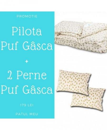 pilota-perne-puf-gasca-PRO-001