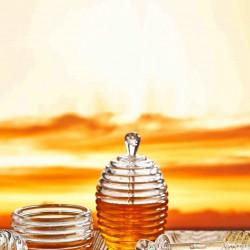 Set 2 borcane cu capac si lingurite pentru miere, Kosova, 9x14 cm, Transparent