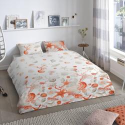 Lenjerie de pat pentru doua persoane, Good Morning, Shells, 100% bumbac, 3 piese, multicolor
