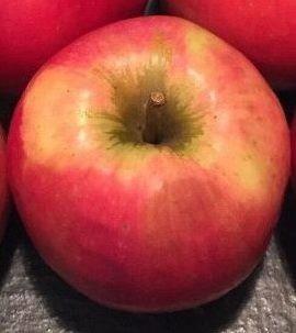 Poze Măr Cripps Pink