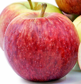 Poze Măr Empire