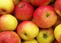 Poze Măr Relinda