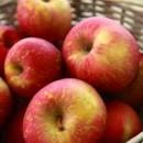 Măr Domnesc