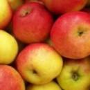Măr Relinda