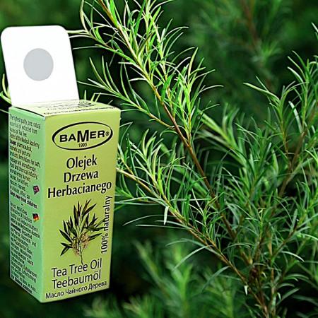 Ulei Esential de Tea Tree (Arbore de ceai), natural, pentru aromoterapie, cosmetica, baie, masaj, foto2
