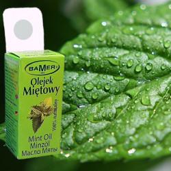 Ulei Esential de Menta Salbatica Bamer, 100% natural (Mentha Arvensis Oil), pentru aromoterapie, cosmetica, baie, masaj, 7ml