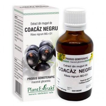 Ribes Nigrum (muguri coacaz negru) 50ml
