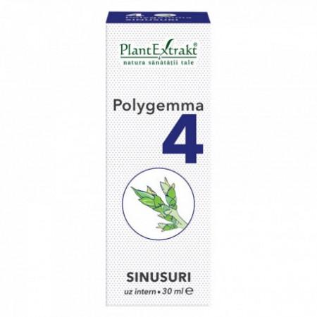 Polygemma nr.4 30ml (sinusuri) Plantextrakt