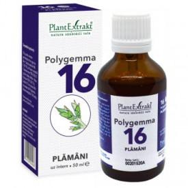 Polygemma nr.16 50ml (plamani) Plantextrakt