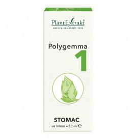 Polygemma nr.1 50ml (stomac) Plantextrakt