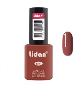 Semipermanenta Lidan 10ml-047