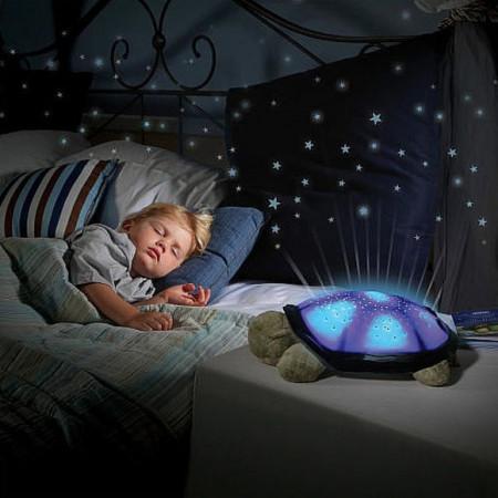 Slika Čarobna Kornjača zvezdano nebo