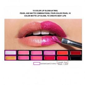 Profesionalna paleta šminke - senke,karmini,bronzeri,rumenila