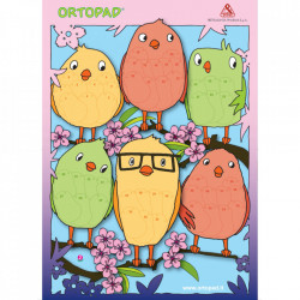 Poster recompensa ocluzoare copii Ortopad PASARI