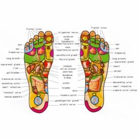 Papuci cu masaj acupunctura