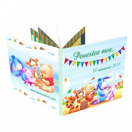 Marturie Carticica Winnie the Pooh