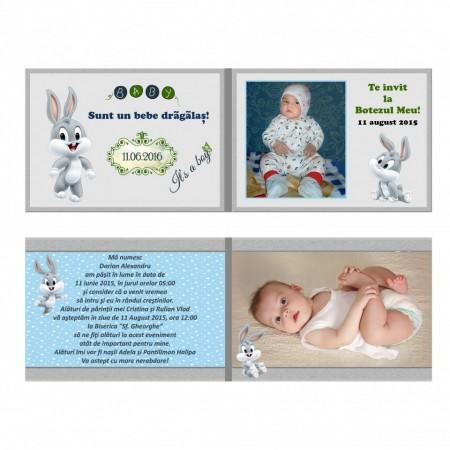 Invitatie Botez Dubla Baby Bugs Bunny