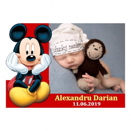 Magnet Contur Mickey Mouse 14