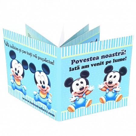 Marturie Gemeni Carticica 2 Mickey 2