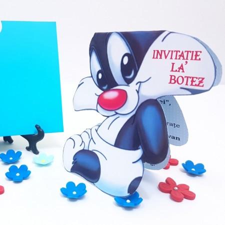 Invitatie Botez Contur Silvester