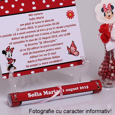 Invitatie Botez Papirus Disney Bebelina 2