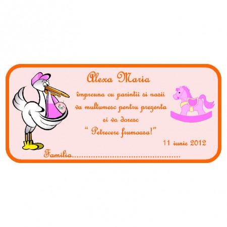 Plic Botez Bebelusa 36