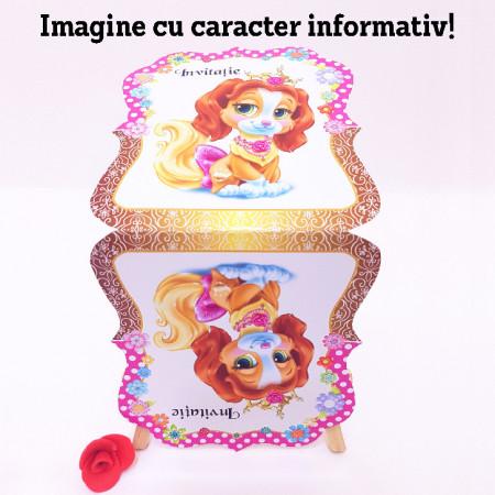 Invitatie Gemeni Contur Disney 3