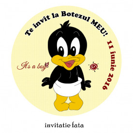 Invitatie Botez Rotunda Duffy Duck