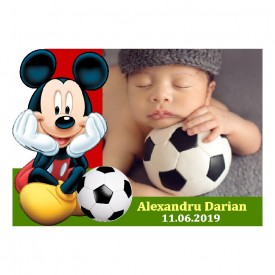 Magnet Contur Mickey Mouse 24
