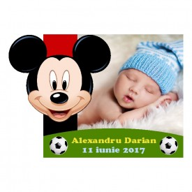 Magnet Contur Mickey Mouse 18