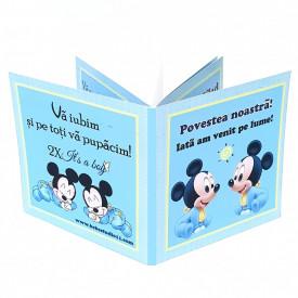Marturie Gemeni Carticica 2 Mickey 3