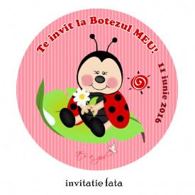 Invitatii Botez Rotunde Buburuza 2