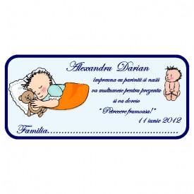 Plic Botez Bebe 91