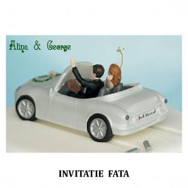 Invitatie Nunta Carte Postala INCP78
