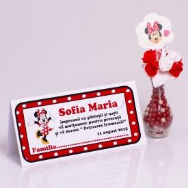 Plic Botez Minnie Mouse 2