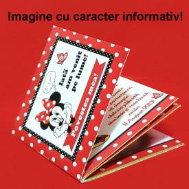 Marturie Carticica Printese Disney